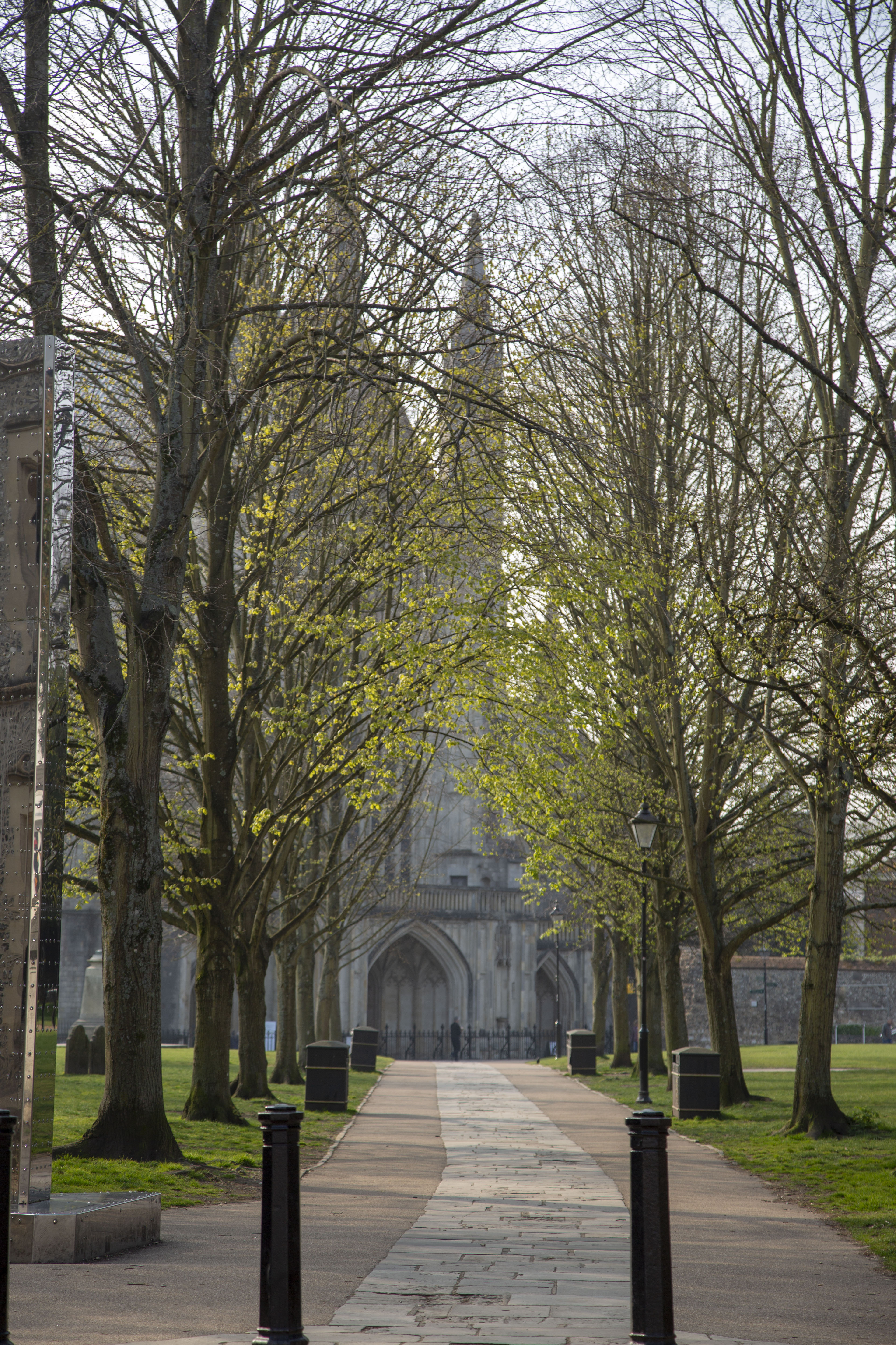 Focus on a cobbled path lined with blossoming trees, leading up to Winchester Cathedral
