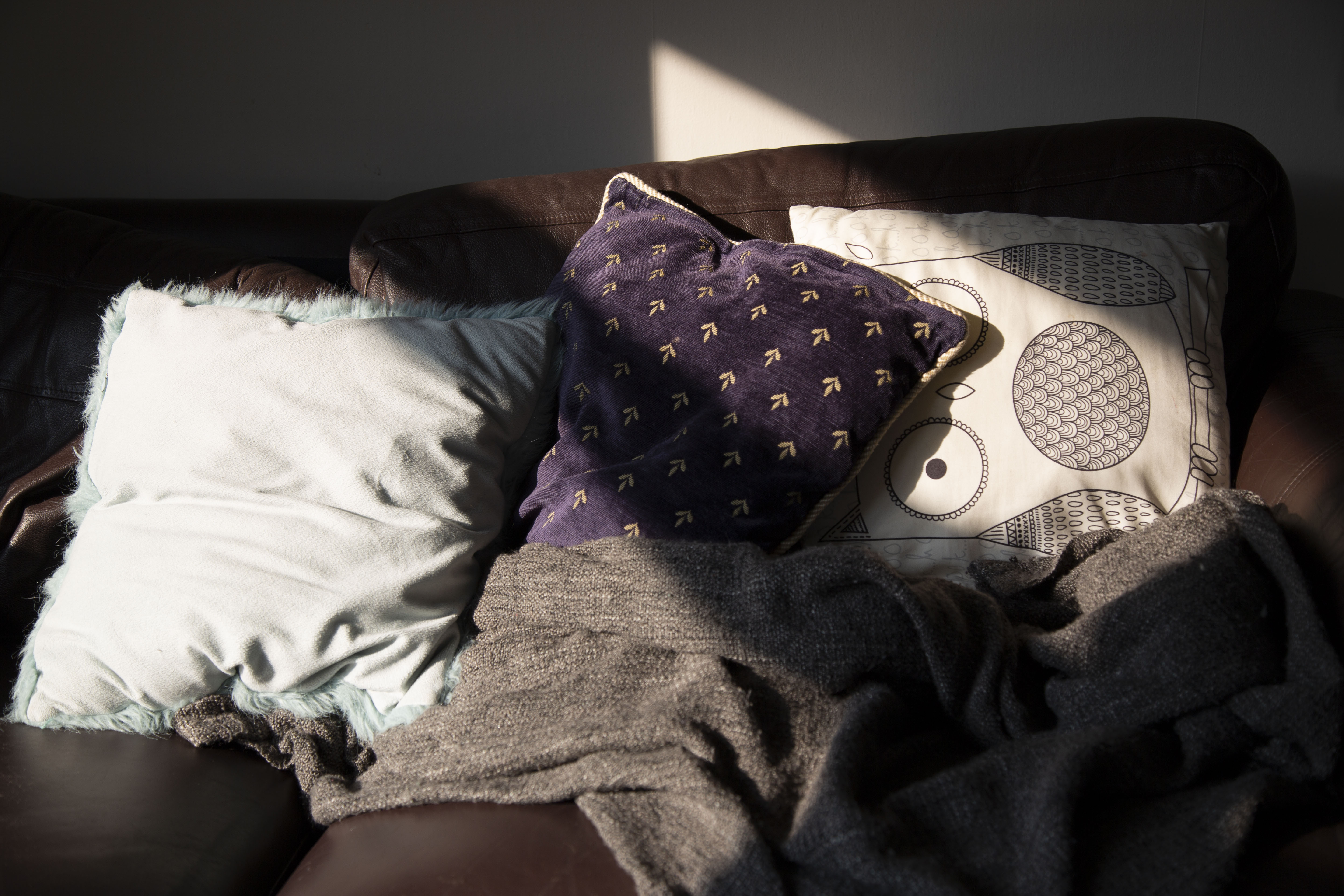 A picture of the sun hitting blue and white pillows on Rose's brown sofa.