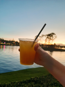 hand holding a Kung Fu Punch against the sunset at EPCOT's World Showcase