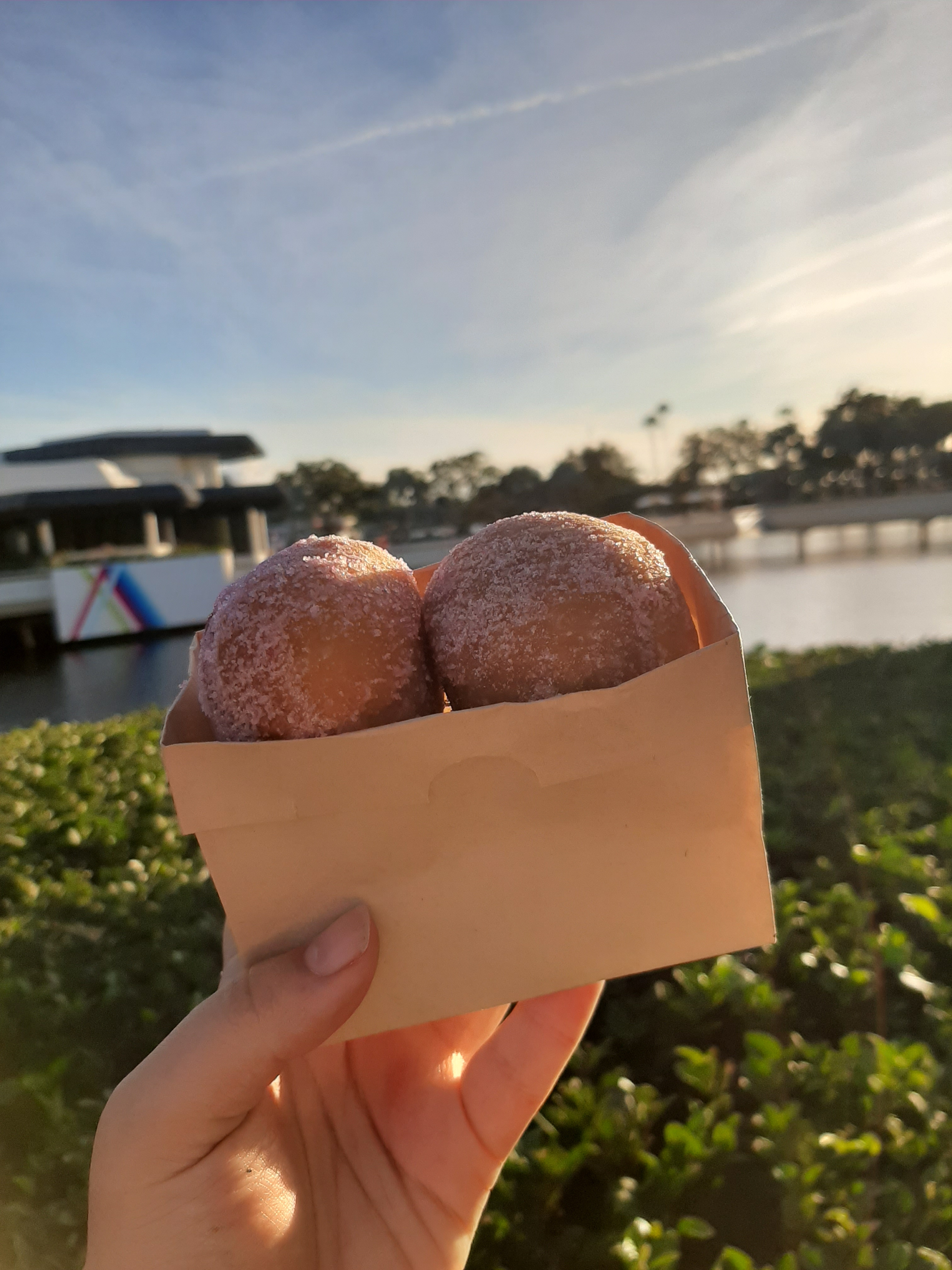 Rosie's hand holding a small box of Strawberry Dusted Yeast Donut Holes against a blue sky