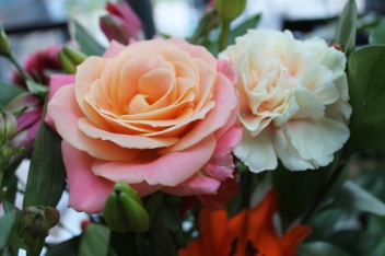 Flowers from my grandparents | rosie abigail
