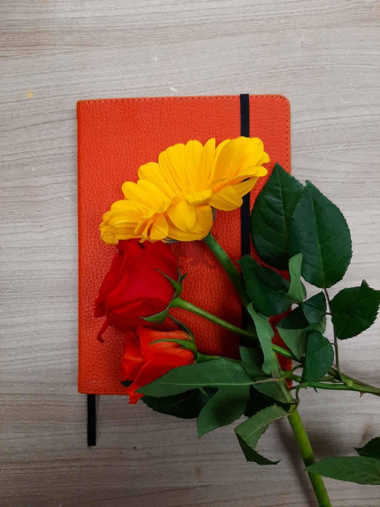 Orange Dingbat's bullet journal on a light wood table. On top of the journal is a yellow flower, red rose, and orange rose, all with green stems