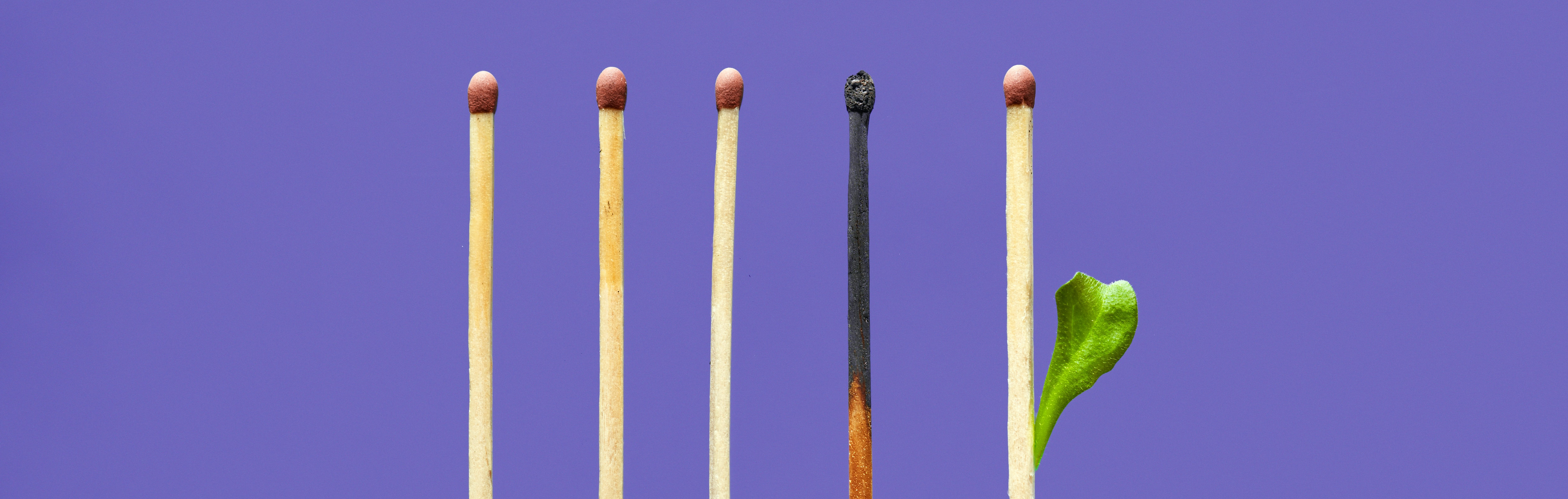 A purple background. Five matches