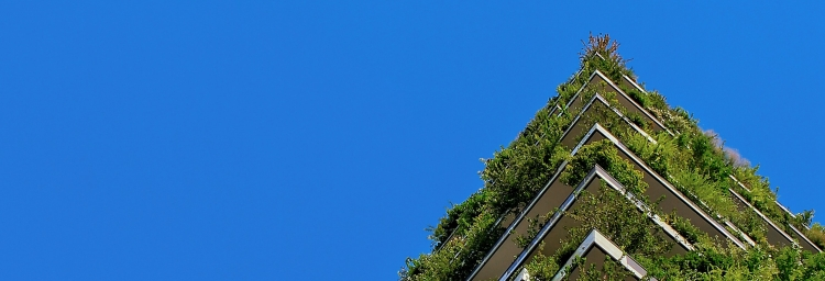 Five Things You Can Do to Live More Sustainably! | Blue sky, green plants growing out of a building