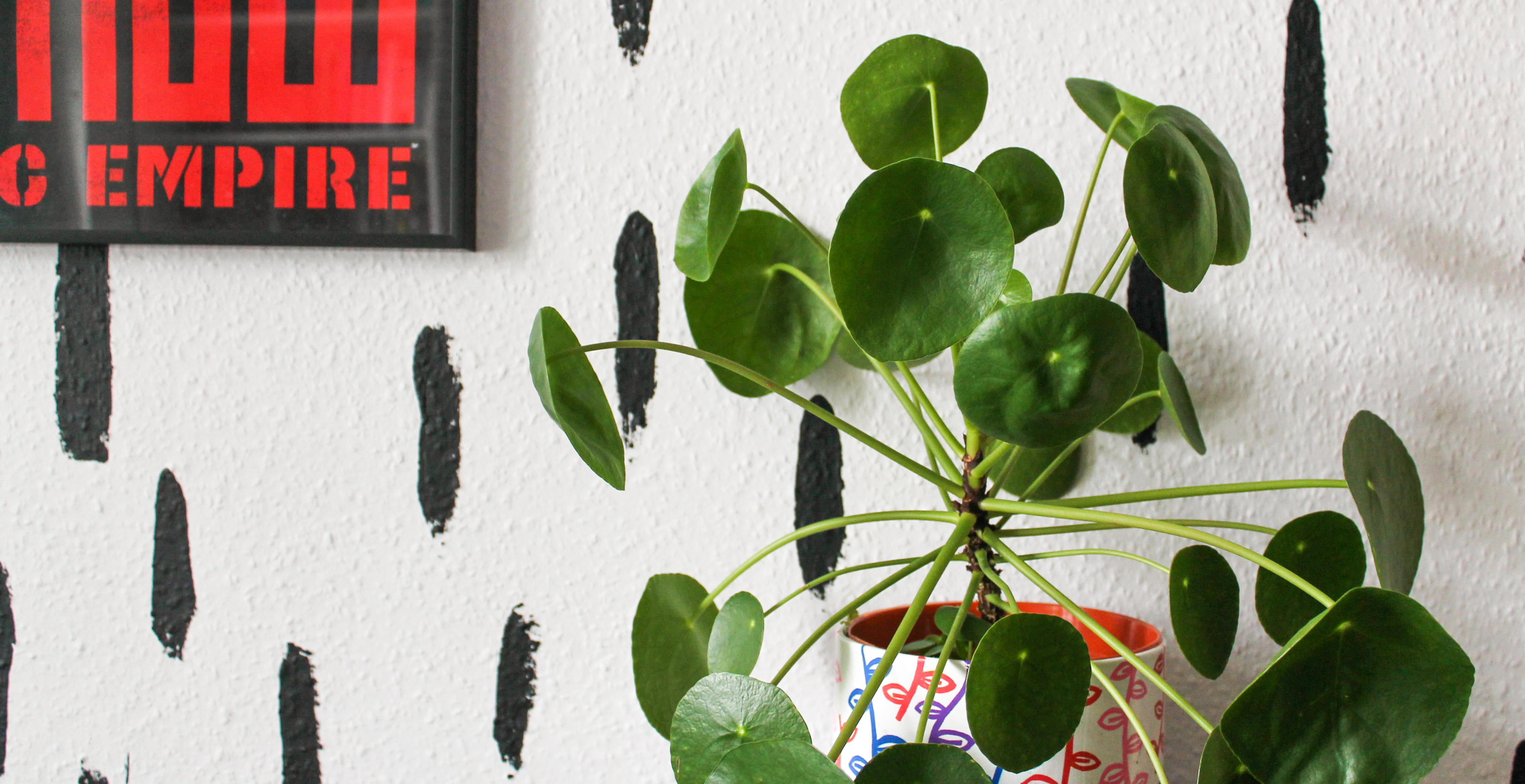 Pilea in a white pot decorated with leaves. Pilea is a green plant with circular leaves. Backdrop is a black and white mural, with a red and black picture to the left.
